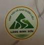 Dinh Son Glue Medicine Cooperative